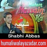 http://audionohay.blogspot.com/2014/10/shabhi-abbas-nohay-2015.html