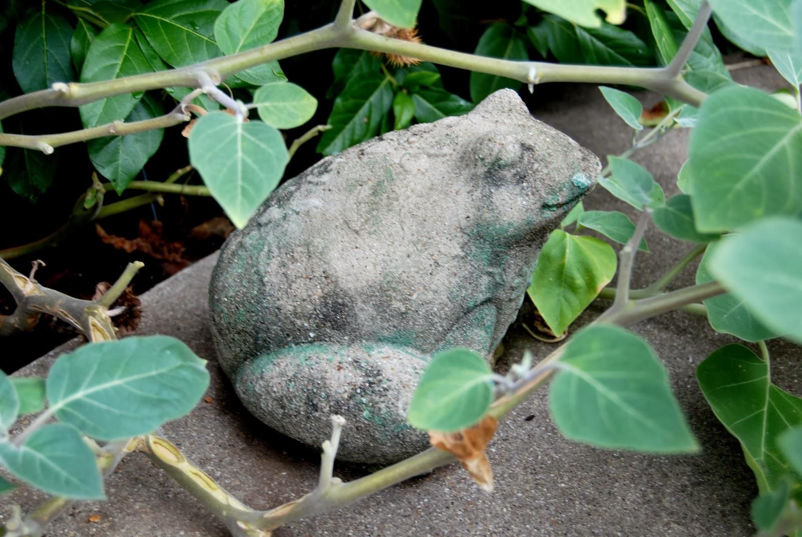 Vintage Garden Frogs 6