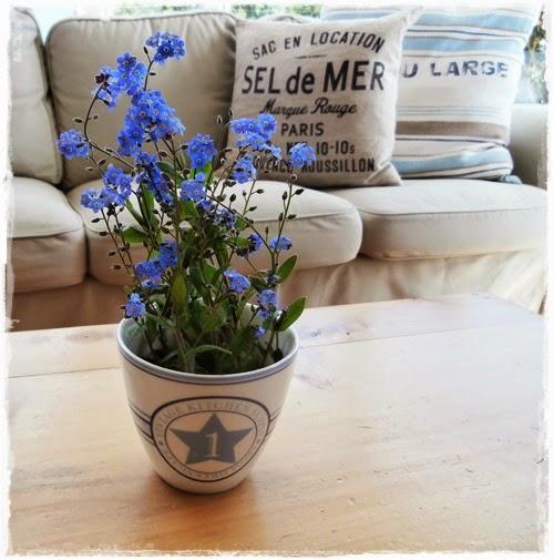 Blume Becher
