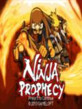 Ninja-Prophecy