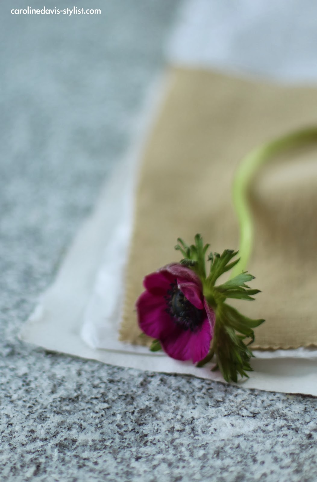 flowers, carolinedavis-stylist.com, trend-daily blog, styling details