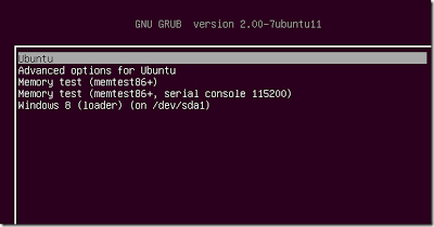 ubuntun dual boot windows 8