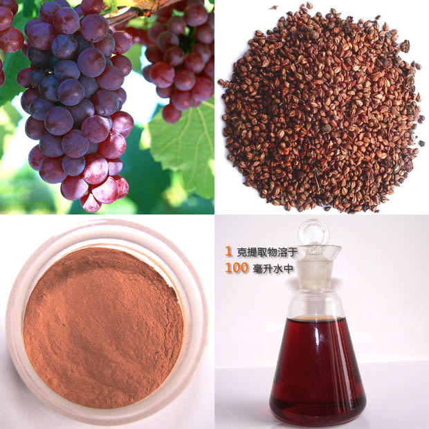Good Health For Life Benefits Of Grape Seed Oil