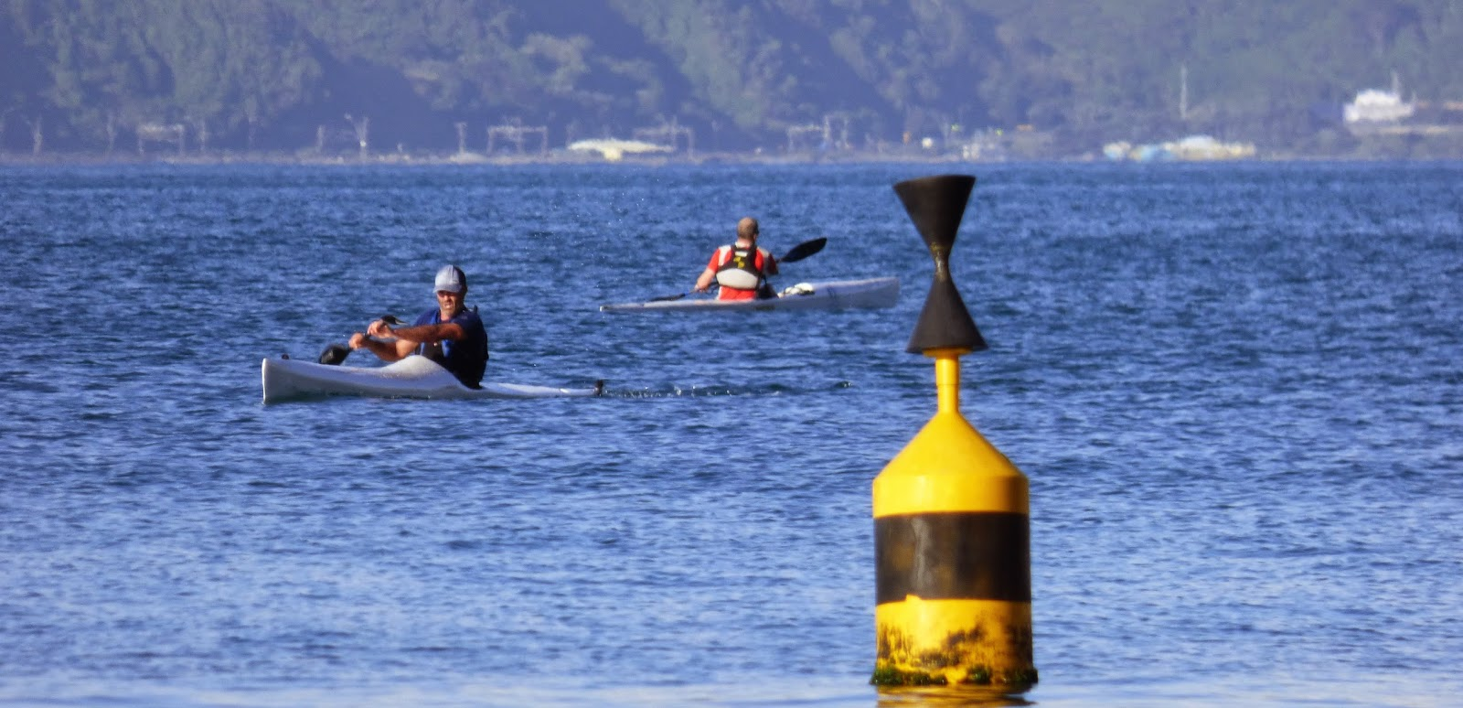 Welly Paddlers: Final Twilight for 2014
