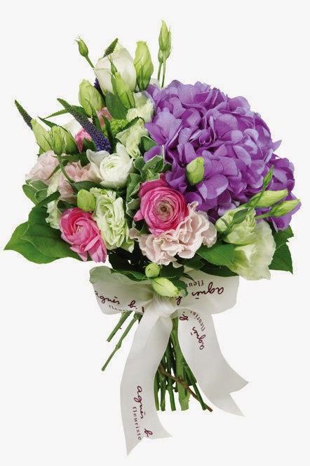 agnes b紫色繡球花球襟用嗎?