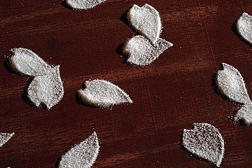 oeuvre d'art de l'artiste japonais motoi yamamoto feuille de sel dans une galerie d'art contemporain