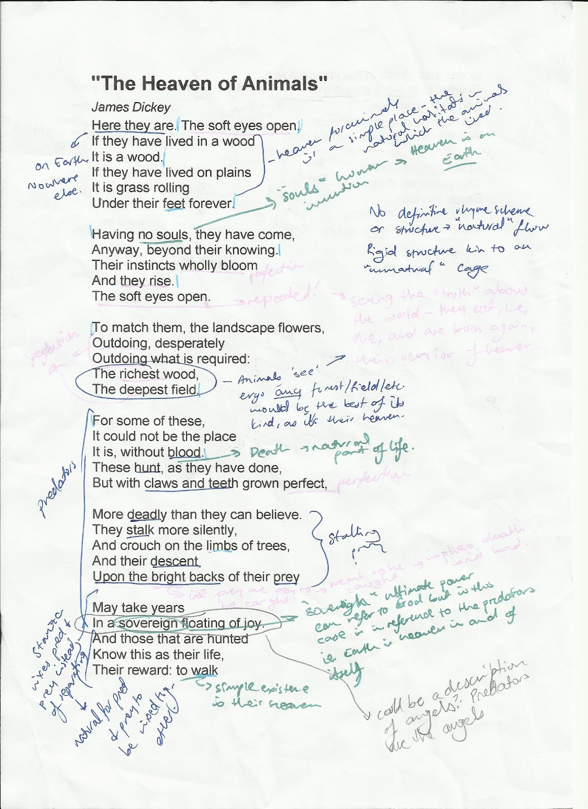 the nardvark a level 7 essay for ib english exam paper 1 commentary the nerdvark spent nearly half an hour dissecting this poem and made careful notes before beginning his commentary