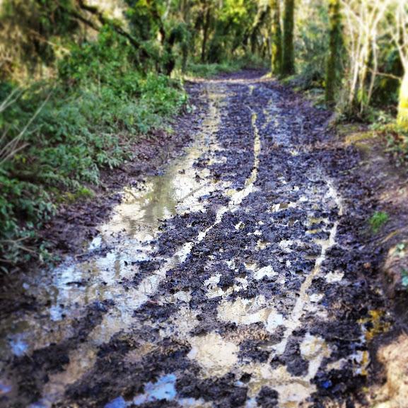 Muddy cycling in Cornwall