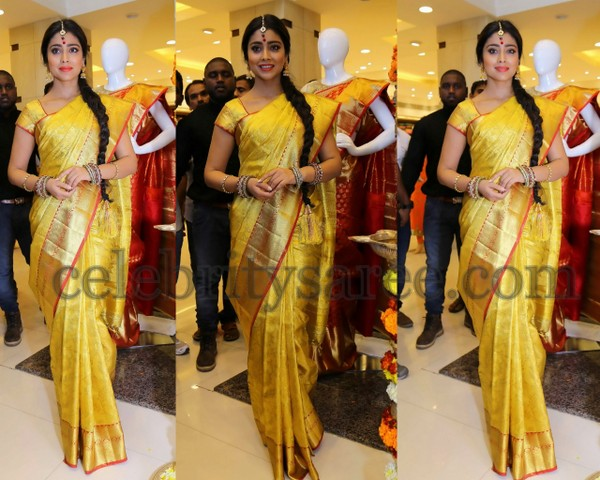Shriya Saran at Kalanikethan