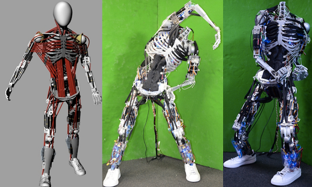 Kenshiro Robot