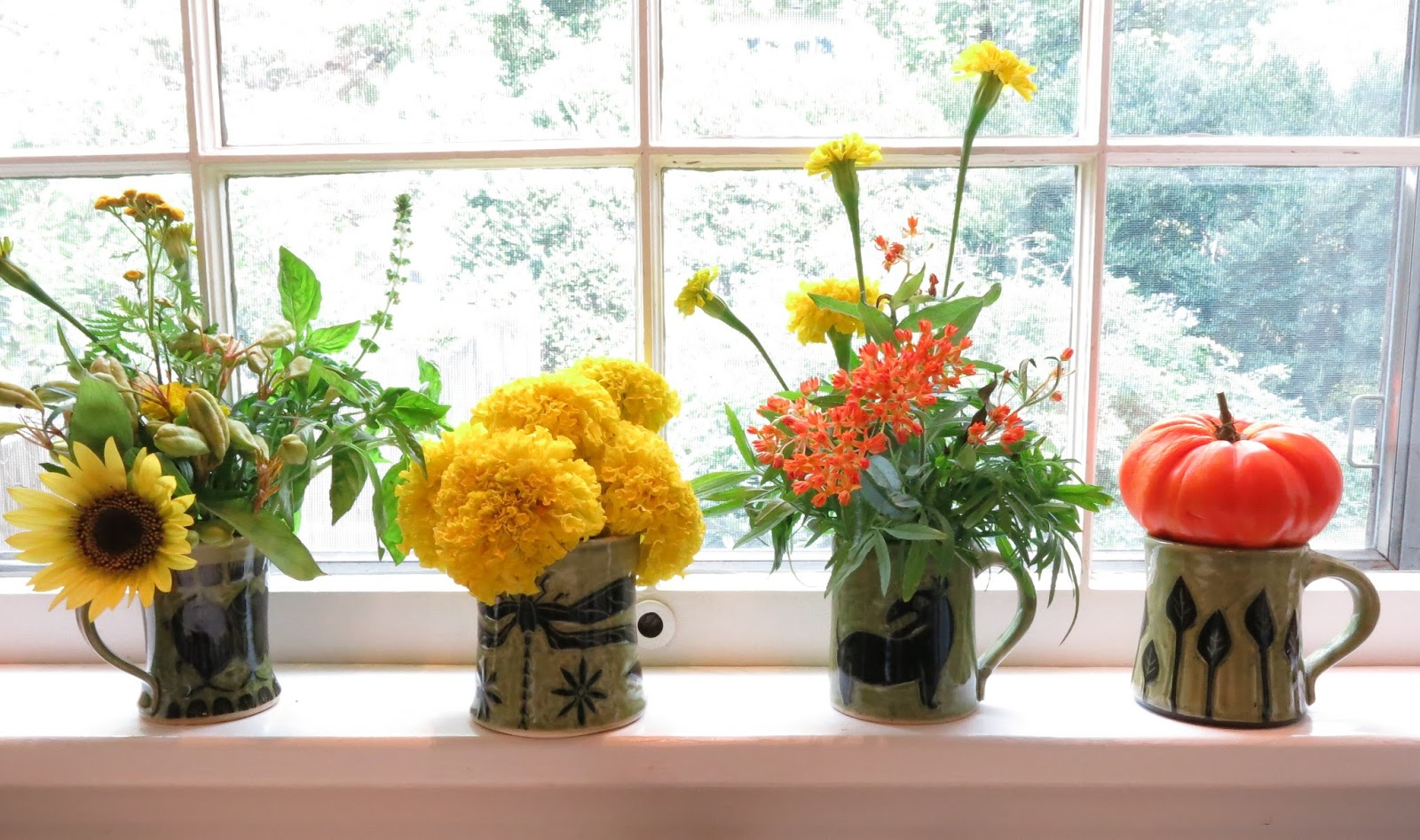 Included In The Mugs Are From Left To Right 1 Sunflower Blackberry Lily Pods Marigolds Basil 2 Giant Yellow Marigold Flowers 3 Orange Erfly
