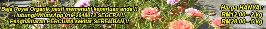 Baja Royal Organik