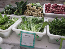 Friday February 18 Greenmarket