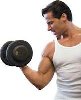 Tips-Latihan-Fitnes-Untuk-Pemula