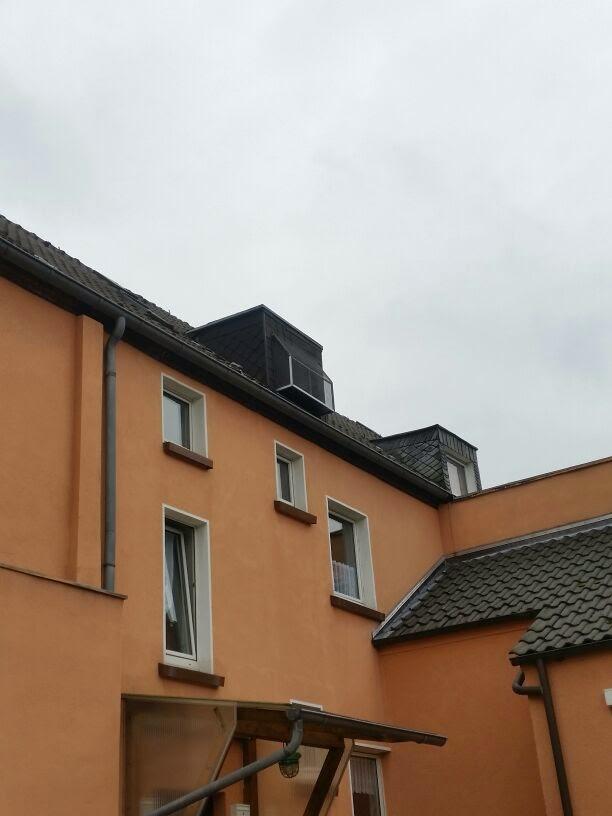 Fenstersicherung für Katzen mit Insektenstop