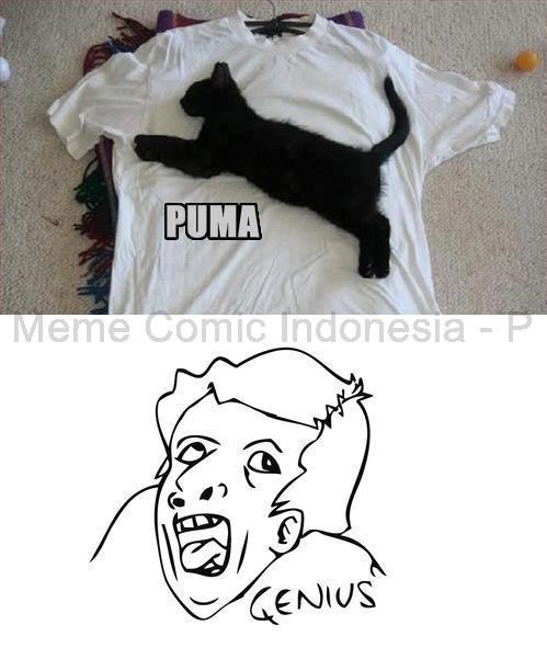 WLA Bloggerian: Genius Meme Pictures