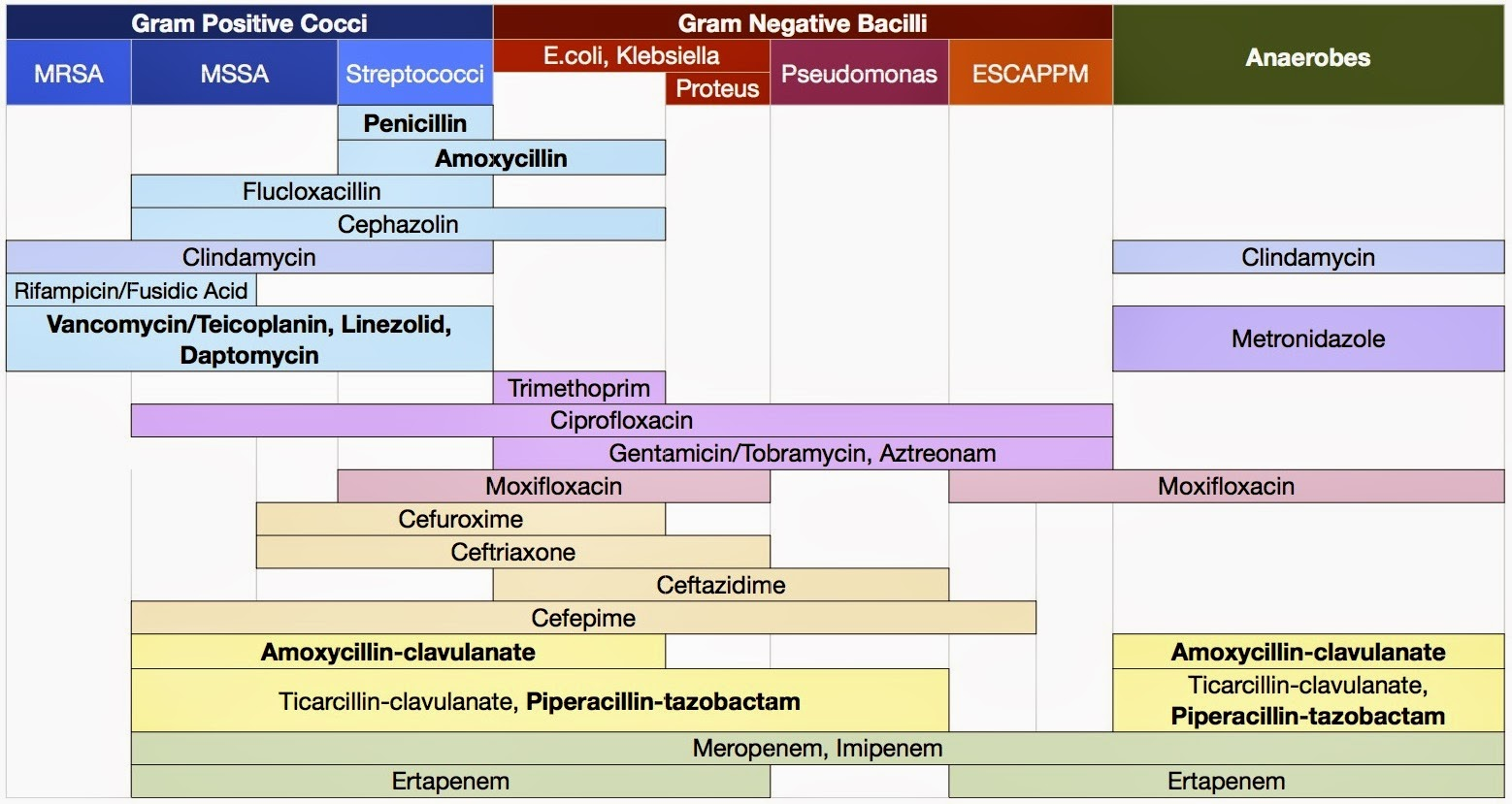 antibiotic spectrum