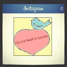 Seguici su Instagram: