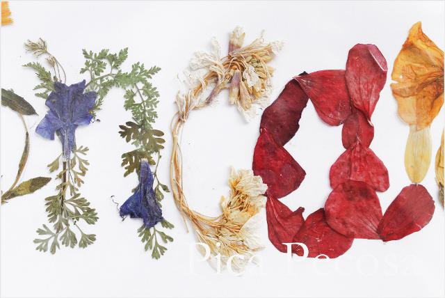 cuadro-con-nombre-hecho-flores-secas-prensadas-diy-04