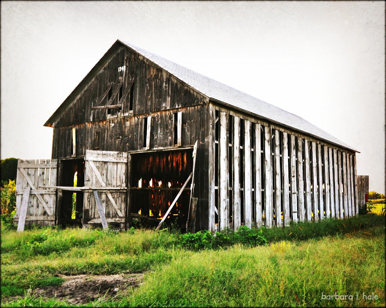 Image Gallery Tobacco Barn
