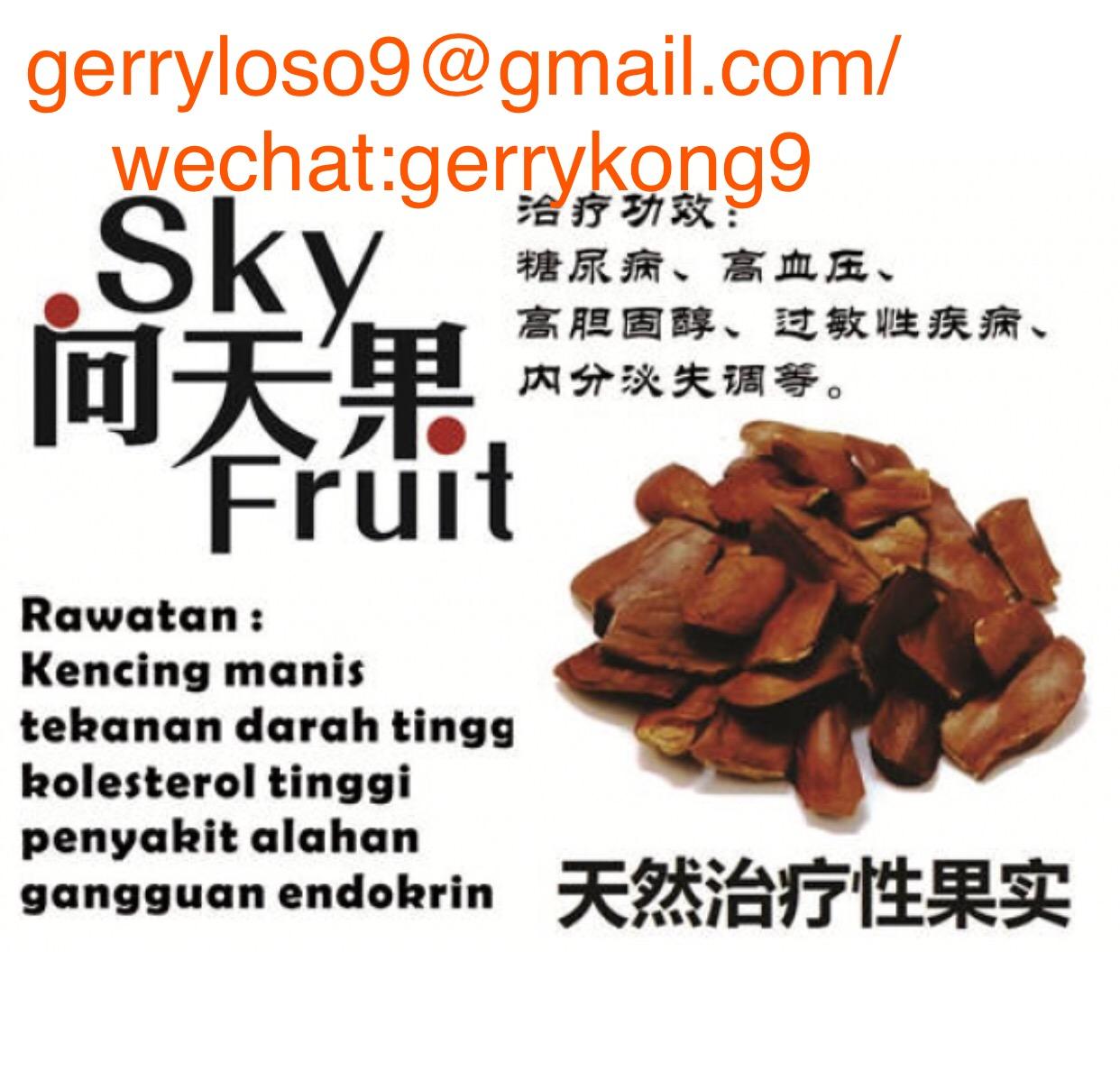 向天果/Sky Fruit,Mahogany Fruit/Buah Tunjuk Langit,Buah Mahogani