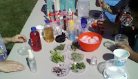 Summer Science Lab