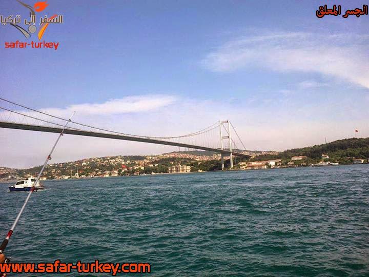 برنامج مميز لمدة تركيا بمناسبة