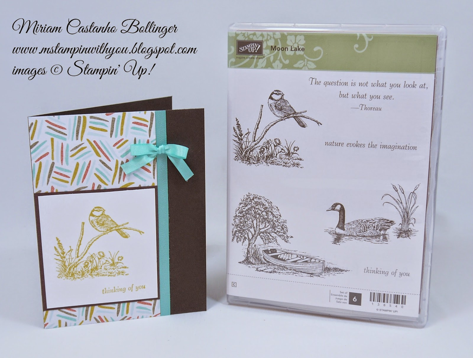 Miriam Castanho Bollinger, mstampinwithyou, stampin up, demosntrator, rs145, SAB, best year ever dsp, moon lake stamp set