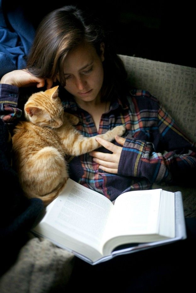 10 Reasons Why Cats Make Great Pets