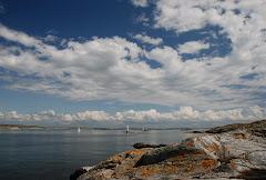 Hav och kust