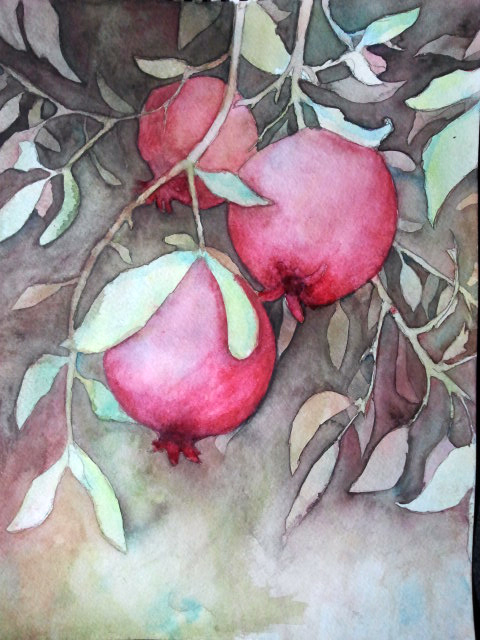 Watercolor Pomegranate