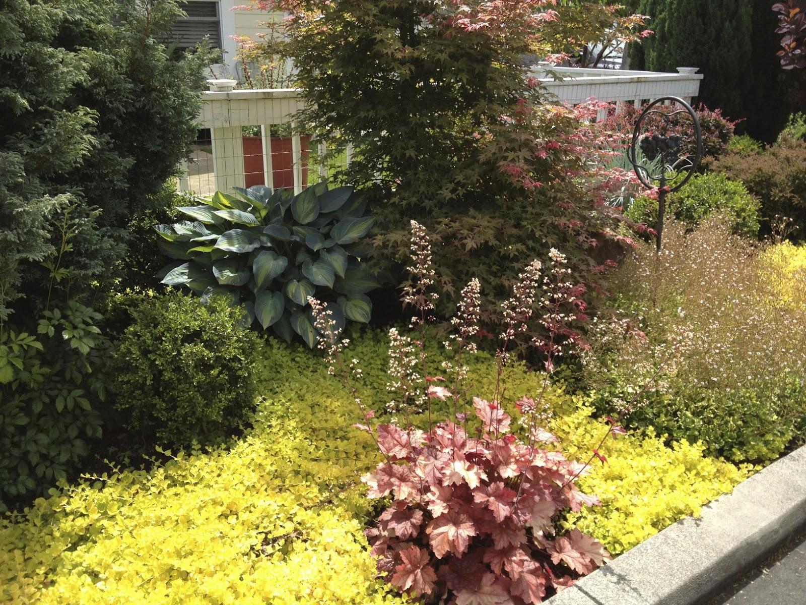 alice 39 s garden. Black Bedroom Furniture Sets. Home Design Ideas