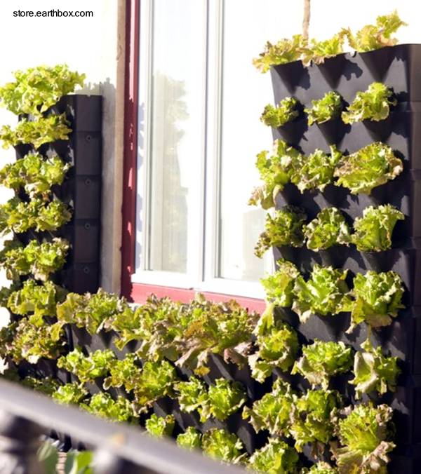 Arquitectura de casas jardines peque os verticales for Jardin 7 17