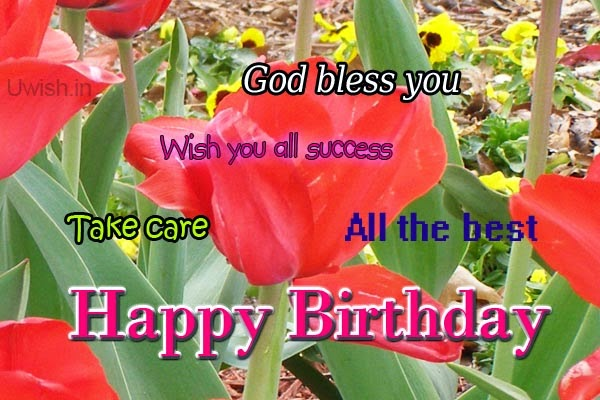 Happy Birthday e greetings and wishes with rose on quote god bless you.