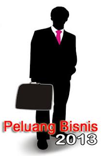bisnis online, bisnis internet, peluang bisnis, peluang usaha, usaha online 2013
