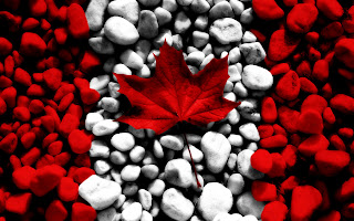 Canada Flag Real Leaf and Stones Awesome Photoshop Design Wallpaper