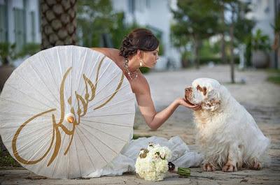 mascotas en nuestra boda perros