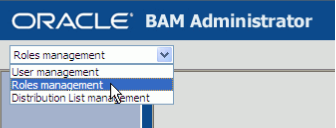 Role Management in BAM