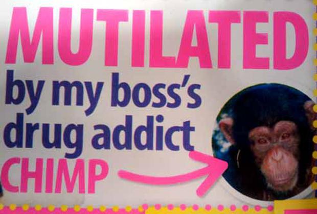 Wtf british gossip mag cover lines