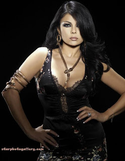 haifa wehbe befor plastic surgery