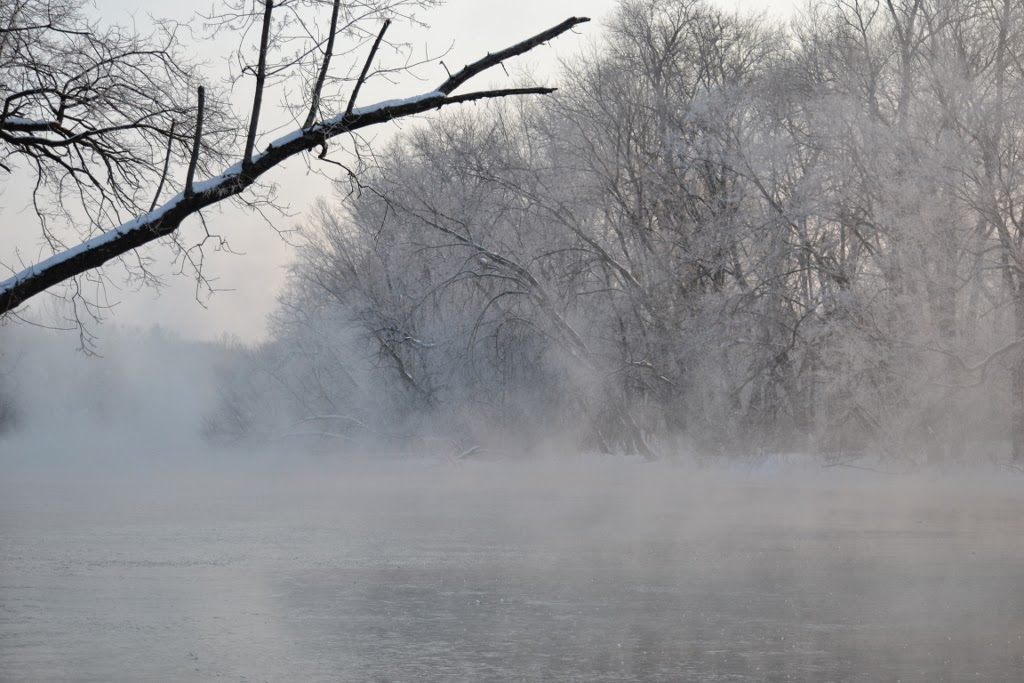 ice, water vapor, and hoarfrost