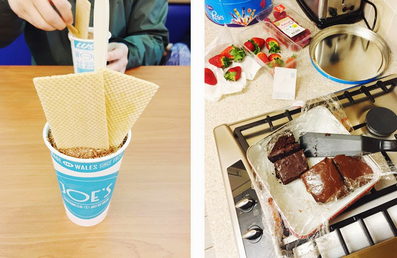 Joe's Ice Cream // Homemade Brownies