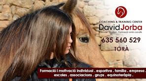 FORMACIÓ ASSISTIDA AMB CAVALLS