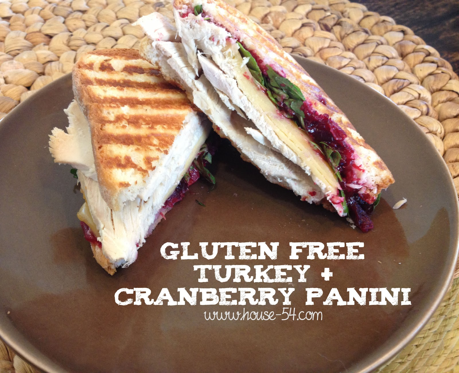 Gluten Free Thanksgiving Leftovers Turkey Cranberry Panini