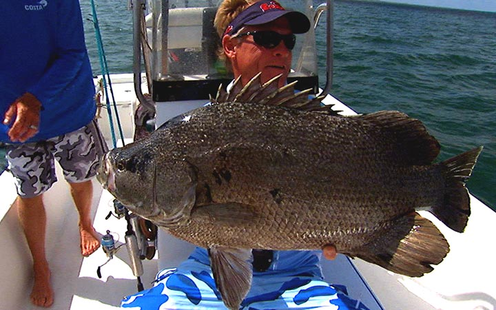 February Cape Canaveral Tripletail Fishing Report with Capt. Scott Lum