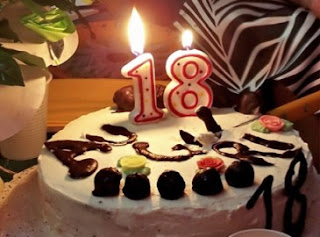 11th Birthday Party Ideas on 18th Birthday Party Ideas For Boyfriend