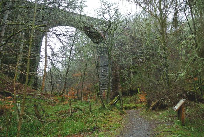 Big Burn Walk, Golspie, Scotland
