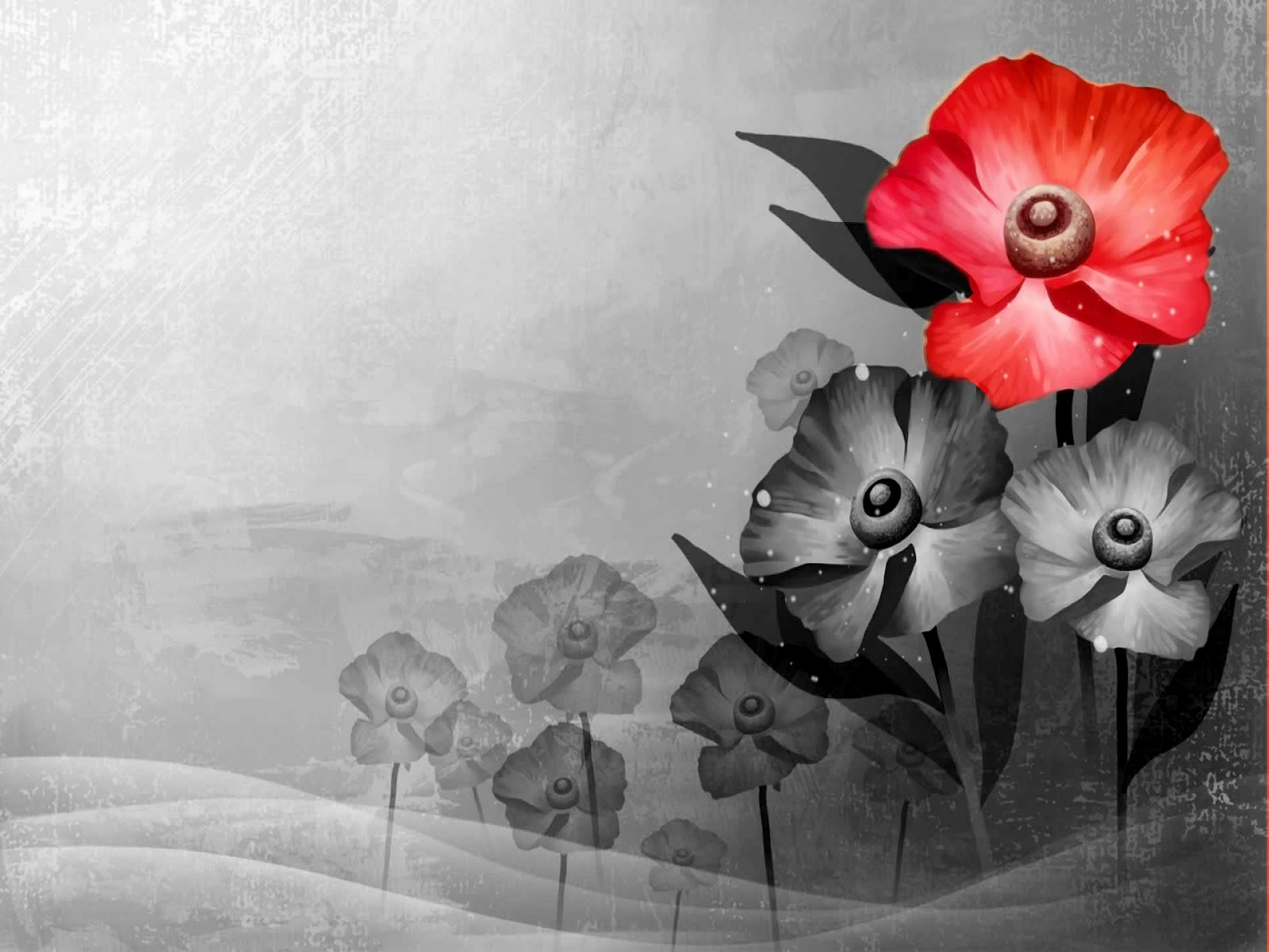 Black and white and red facebook cover