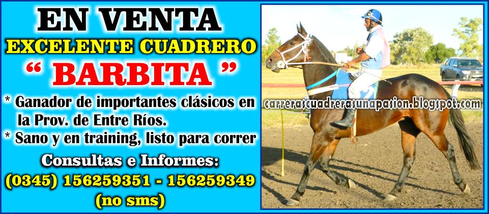 BARBITA - VENTA 06.05.2015