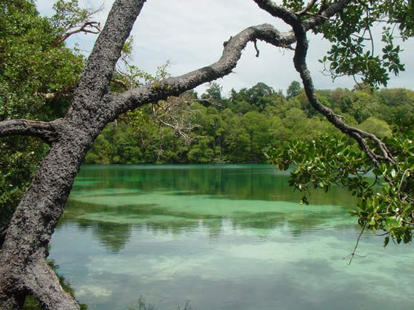 Objek wisata Pulau Kakaban 2